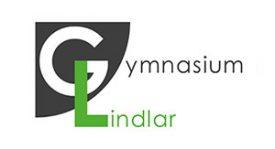 Gymnasium Lindlar Logo Timeline